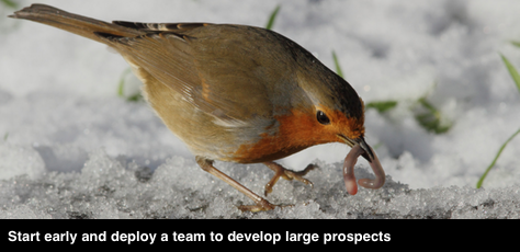Developing large prospects